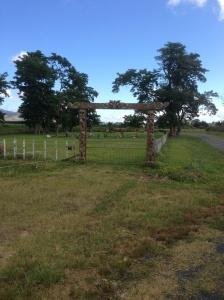 Kopua Marae Cemetery Gates